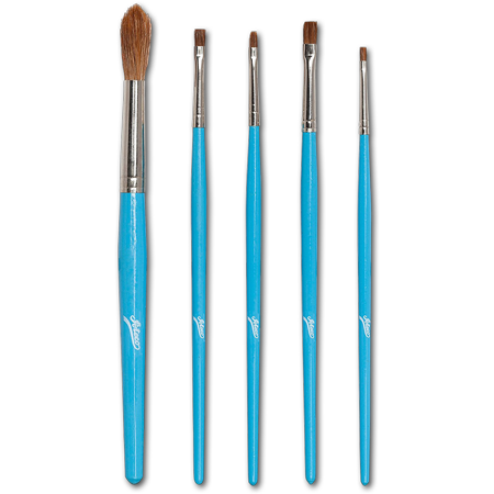 5 Piece Artist Brush Set